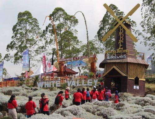Festival Pesona Taman Edelweis Bali 2019