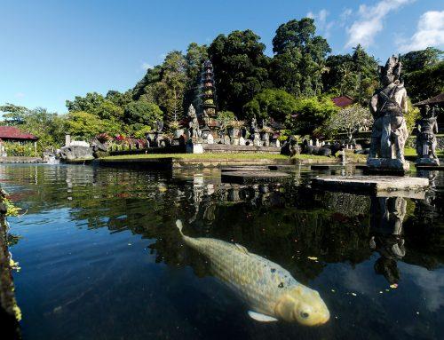 Menenangkan diri di Taman Wisata Tirta Gangga