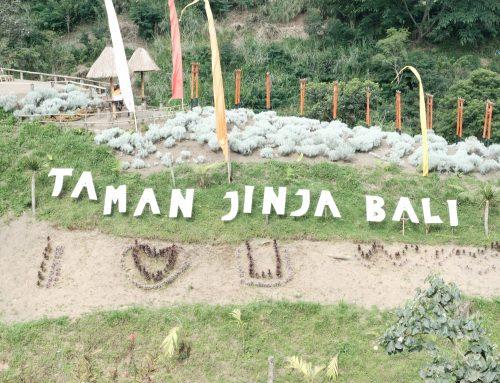 Taman Jinja Bali Destinasi Wisata Negeri Sakura di Bali